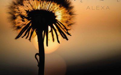 ALEXA SINGLE RELEASE